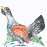 Das mudanças do clima e das mudanças nas aves